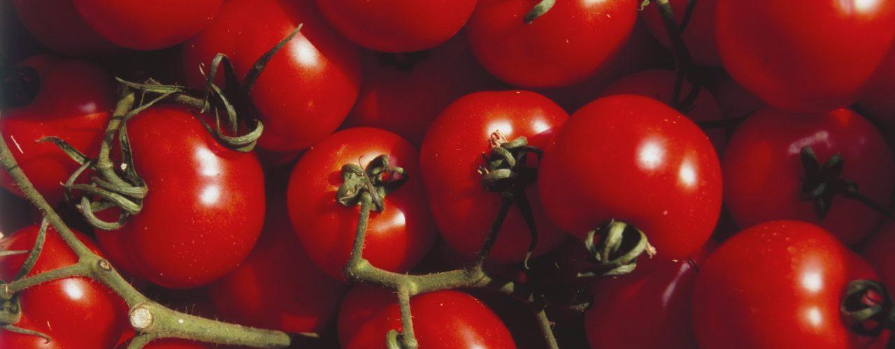 Cassette per pomodori
